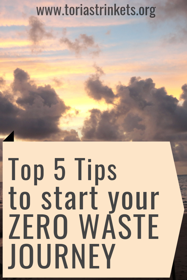 Copy-of-Copy-of-Feminine-Pinterest-Templates-1 5 Tips to Start Your Zero Waste Lifestyle